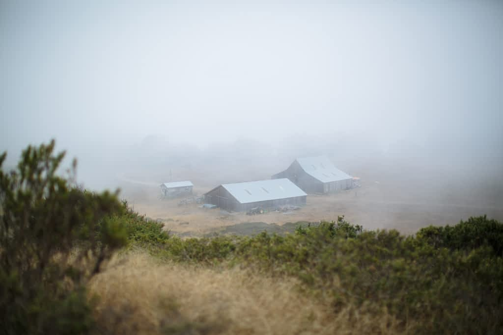 Cuffey's Cove Ranch. A Mendocino barn wedding venue. Image by MOJO Weddings.