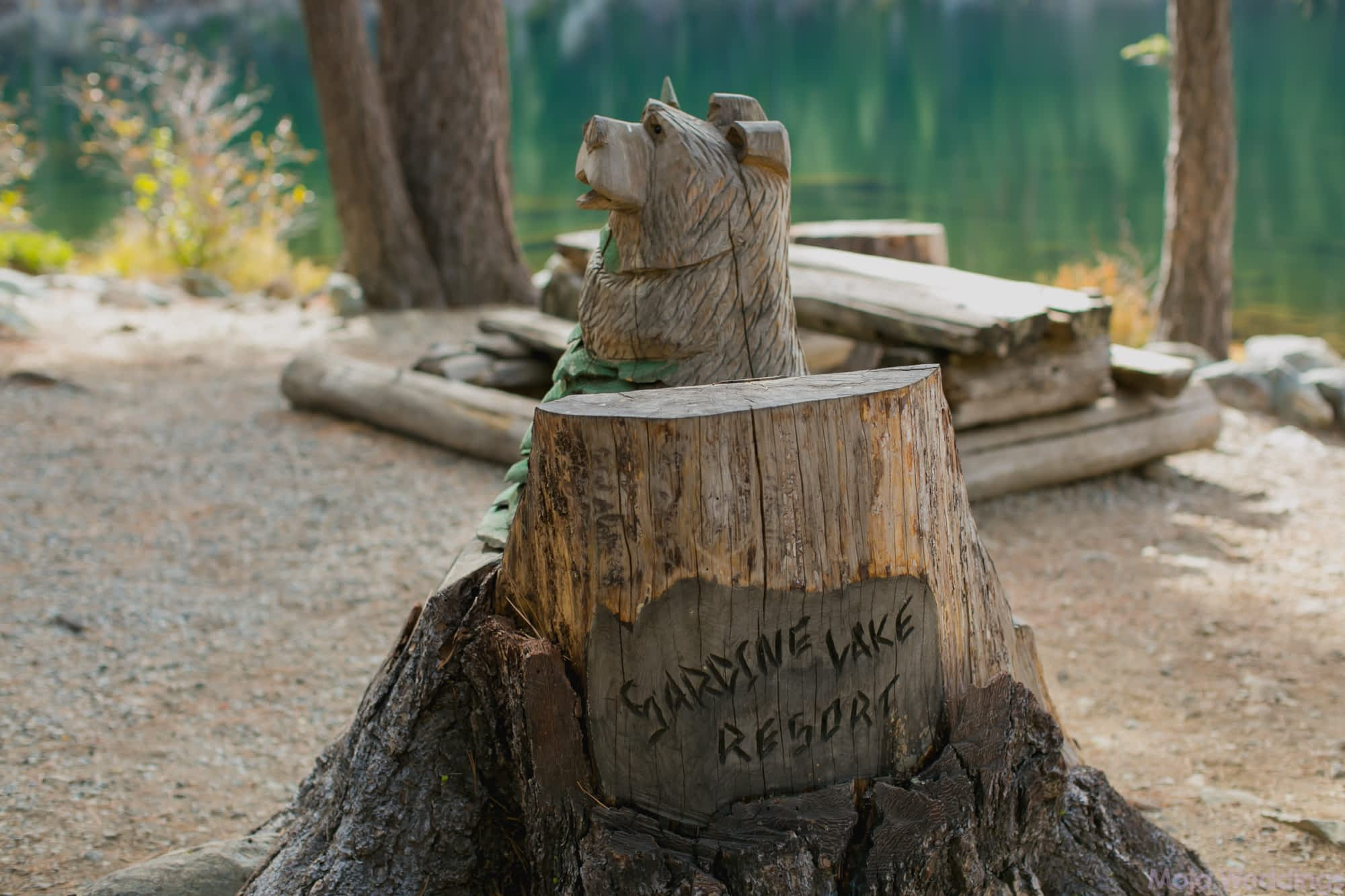 A wood carving of a bear and a sign carved in to a stump saying Sardine Lake Resort.