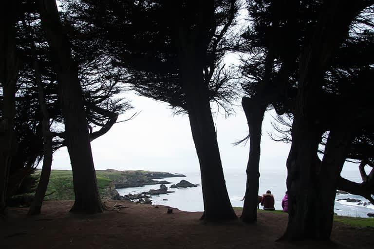 mojocreates_cypressgrovemendo_03